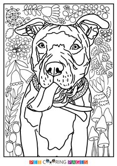 American Pit Bull Terrier Coloring Page Cool Pit Bull Dog Stuff