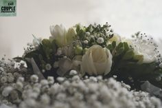 baby's breath so pretty for a bride. Real Wedding by Couple Photography City Centre Dublin, Baby's Breath, Couple Photography, Wedding Bouquets, Real Weddings, Succulents, Bloom, Bride, Couples