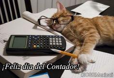 ¡Feliz Día del Contador!  Un poco de Humor: No estoy durmiendo, estoy calculando los #impuestos ¡Feliz Día del #Contador ! #Mexicali #SATMX Excelente Domingo  , te desea #ICSEmexicali