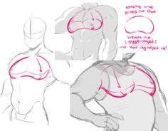 Drawing Tips Chest tutorial Breasts drawing tutorial - How do you draw the man tiddy? I have been struggling drawing them :'> to make this a lil more trans-friendly, just refer to them as pecs! :~D also, I'm going to assume you mean the more muscular. Human Figure Drawing, Figure Drawing Reference, Body Drawing, Anatomy Drawing, Anatomy Art, Art Reference Poses, Anatomy Reference, Human Anatomy, How To Draw Anatomy