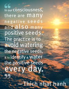 "#quoteoftheday ""In our consciousness, there are many negative seeds and also many positive seeds. The practice is to avoid watering the negative seeds, and to identify and water the positive seeds every day."" - Thich Nhat Hanh. http://www.positivewordsthatstartwith.com/"