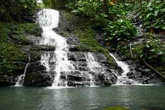 La Coca Falls trail in El Yunque.  3 river crossings?  Yay!  -Done, and beautiful.  I have the bruises to prove it.