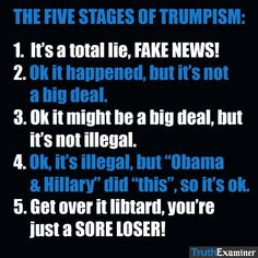 """Wow, that's pretty much textbook for every """"debate"""" a Trumpster attempts."""