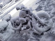 Photo of the Day: Harley Covered with Snow