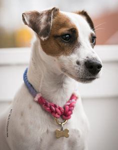Happy Pooch Handmade Dog Apparel, Collars, and Leads