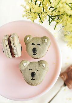 Caramel koala macarons  from Raspberri Cupcakes