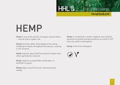 HoodLambs' Eco Standards - Hemp