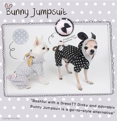 Dog Clothes- Louis Dog Jogger Honey Bunny, Pet Clothing