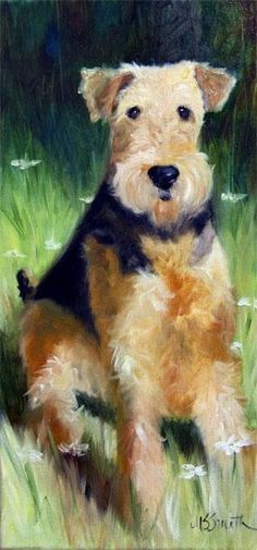 Mssmith Airedale Terrier Welsh Dog Portrait Art Canine | eBay