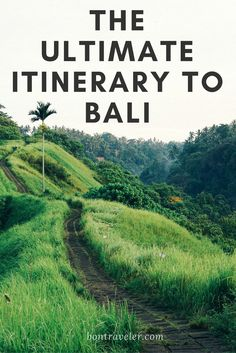 The Ultimate Itinerary to Bali