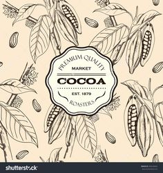 Berries, Leaves, Shoots And Grains Of Cocoa. Cacao. Seamless Pattern, Hand Drawn. Cocoa Badge. Vector Illustration - 404234662 : Shutterstock