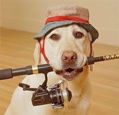 Man's Best Friend #HappyFathersDay #FathersDay #Dogs #DogLovers