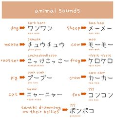 "Animal Sounds in Japanese - ""Also, an elephant goes something like パオパオ (pao pao) with their trunks and rabbits go ピョンピョン (pyon pyon) when they hop. Learning A Second Language, Japanese Language Learning, Japanese Phrases, Japanese Words, Japanese Things, Study Japanese, Japanese Culture, Japanese Animals, Korean Writing"