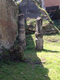 http://prolocoplonti.altervista.org/blog/villa-b-lucius-cassius-tertius/
