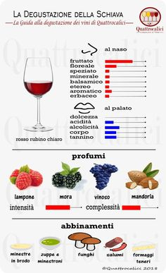Schiava - Guided tasting at the Vini Schiava - Quattrocalici.it, Food And Drinks, Let& learn to taste the Slave on Quattrocalici. Food N, Food And Drink, Wine Education, Wine Tasting Party, Wine Down, Types Of Wine, Wine Refrigerator, In Vino Veritas, Wine Cheese