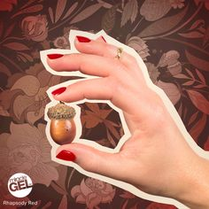 Fall's at your fingertips with no-light in the shade. We'd love to see the nail looks you're painting up, so share your fall-inspired manis below! Sally Nails, Gel Nail Colors, Gel Manicure, Sally Hansen, Autumn Inspiration, Seasons, Inspired, Fall, Painting