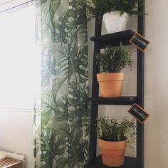 Hmm... is this curtain too much? Viherkasvihulluus on edennyt jo verhoihin asti.  #myhome #instahome #newcurtains #uudetverhot #verhot #hemtex #interior #inredning #home #homedecor #homeinterior #kitchen #greendecor #green #huonekasvit #vihersisustus #viherkasvi #yrtit