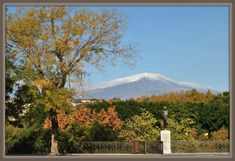 Catania, Sicily, Mount Rainier, Photo And Video, Mountains, Nature, Travel, Naturaleza, Viajes