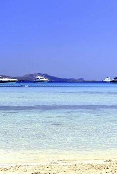Sakarun Beach on Dugi Otok, #CROATIA. www.totalcroatia.eu