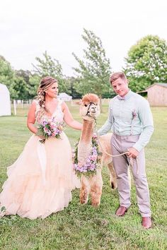 A Quirky Wedding with Alpacas and Whimsy Galore Bride Groom Photos, Bride And Groom Pictures, Quirky Wedding, Magical Wedding, Groom Reaction, Wedding Bride, Wedding Dresses, Rustic Wedding Inspiration, Before Wedding