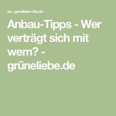 Anbau-Tipps - Wer verträgt sich mit wem? - grüneliebe.de
