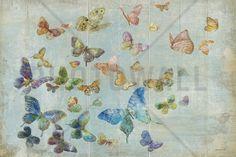 Butterflies - Wall Mural & Photo Wallpaper - Photowall