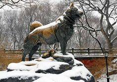 Balto ~ This iconic Central Park statue was created in 1925 in honor of the sled dog who saved Alaska's children from a diphtheria epidemic by delivering medicine over the frozen tundra.