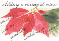 How to paint poinsettias.