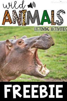 FREE Listening Activities with Wild Animal Sounds Zoo Activities Preschool, Preschool Scavenger Hunt, Listening Activities, Fall Preschool, Active Listening, Animal Activities, Listening Skills, Language Activities, Preschool Activities