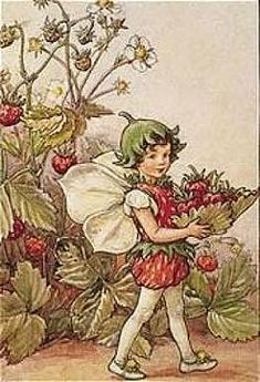 The image of the Strawberry Flower Fairy above is one of Cicely Mary Barker's Flower Fairies. First published in A Flower Fairy Alphabet, London, Blackie, Cicely Mary Barker, Elfen Fantasy, Fantasy Art, Flower Fairies Books, Strawberry Flower, Fairy Pictures, Vintage Fairies, Fantasy Illustration, Garden Illustration