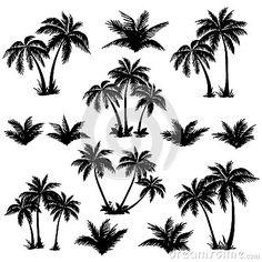 Siluette messe tropicali delle palme