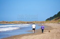 Retired couple walking pet dog along sandy beach, Masterton District, Wellington Region, New Zealand (NZ) stock photo.