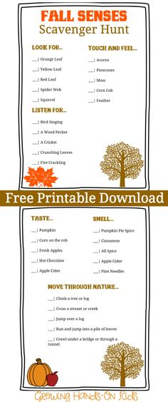 A fun activity printable that encourages your child to explore the outdoors with this fall senses scavenger hunt printable.