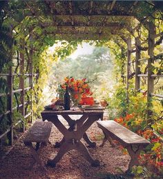 A beautiful and natural way to picnic. I've had gazebo after gazebo but this one tops them all. Just hang some lights in there for ambiance. Imagine the possibilities. A family sitting together, enjoying a meal with nature surrounding them and the table they sit at. Peace and serenity.