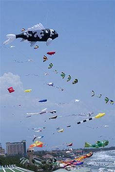 Go fly a kite on a windy day! Check around for  local kite contests. More ideas at FriendMatch.com