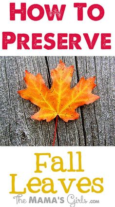 How To Preserve Autumn Leaves - 10 Adorable Autumnal DIY Projects For Your Home!