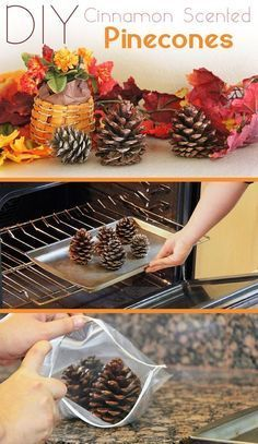 Cinnamon Scented Pinecones are the definition of fall decor! It's so easy to… Cinnamon Scented Pinecones are the definition of fall decor! It's so easy to make it yourself and it makes your entire home smell amazing. Holiday Crafts, Holiday Fun, Diy Thanksgiving Decorations, Autumn Decorations, Thanksgiving Table, Diy Thanksgiving Crafts, Christmas Crafts With Pinecones, Homemade Wedding Decorations, Pinecone Crafts Kids