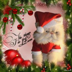 oh the things I do for love ~ Christmas  Cat Blingee by stina scott