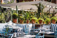 Brilliant Restaurant Gardens The Ivy Chelsea Garden, London Garden Cafe, Sky Garden, Rooftop Terrace, Beer Garden, Home And Garden, Courtyard Cafe, Balcony Garden, Restaurant En Plein Air, Outdoor Restaurant