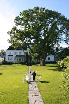 The beautiful 600-year old oak in Säby Säteri, Ingarö, Stockholm archipelago. We got married right under :)