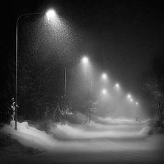 streetlamps - LOVE seeing snow falling against the streetlamps