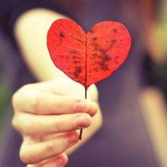 Beim Erleuchtungszustand geht es ja nicht darum besser zu sein als jemand anderes, sondern darum liebevoller zu Leben und das in Frieden.