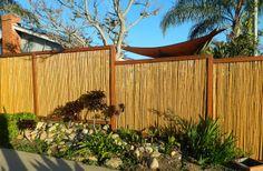 Natural Bamboo Fence- creativehatt.com