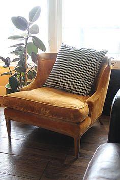I, too, have a rubber plant growing next to a yellow velour armchair #ChairIdeas