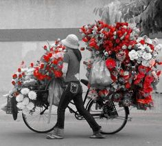 Red Flower Bike