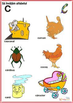 Romans, Homeschool, Activities, Education, Logos, Baby, Kids, Animals, Montessori