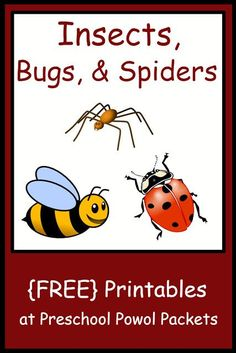 Love these Spider Themed {FREE} Preschool Printables + other bugs Carla in Houston
