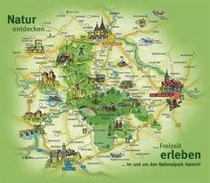 The Hainich National Park, on December was founded in is the Bad Langensalza, Hiking Routes, Vacations, Triangle, Hobbies, Destinations, National Parks, Germany, Europe