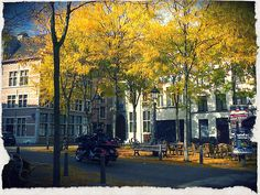Stadswaag, Antwerp
