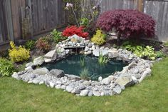 Backyard focal point water garden. This small pond adds interest in the smallest of backyards.